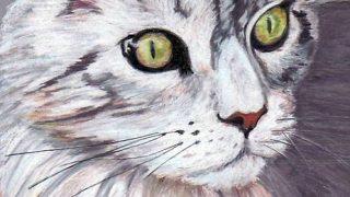 にゃんと愉快なねこ日記―夏目漱石『吾輩は猫である』【読書感想文】