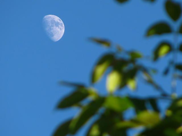 『竹取物語』をやさしく現代語訳・口語訳