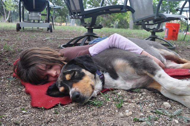 犬と一緒に眠る少女