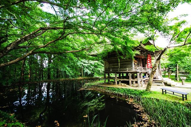池と木々に囲まれた神社