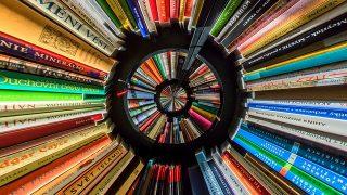 『ハーレムの闘う本屋』読書感想文|読書による革新の確信